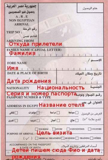 Миграционная Карточка в Египет образец
